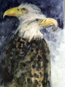 Two American eagles.