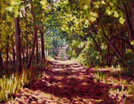 Portrait of a trail going into the shade of the woods.
