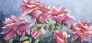 Pink roses on blue background.