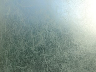 frosted detail 2