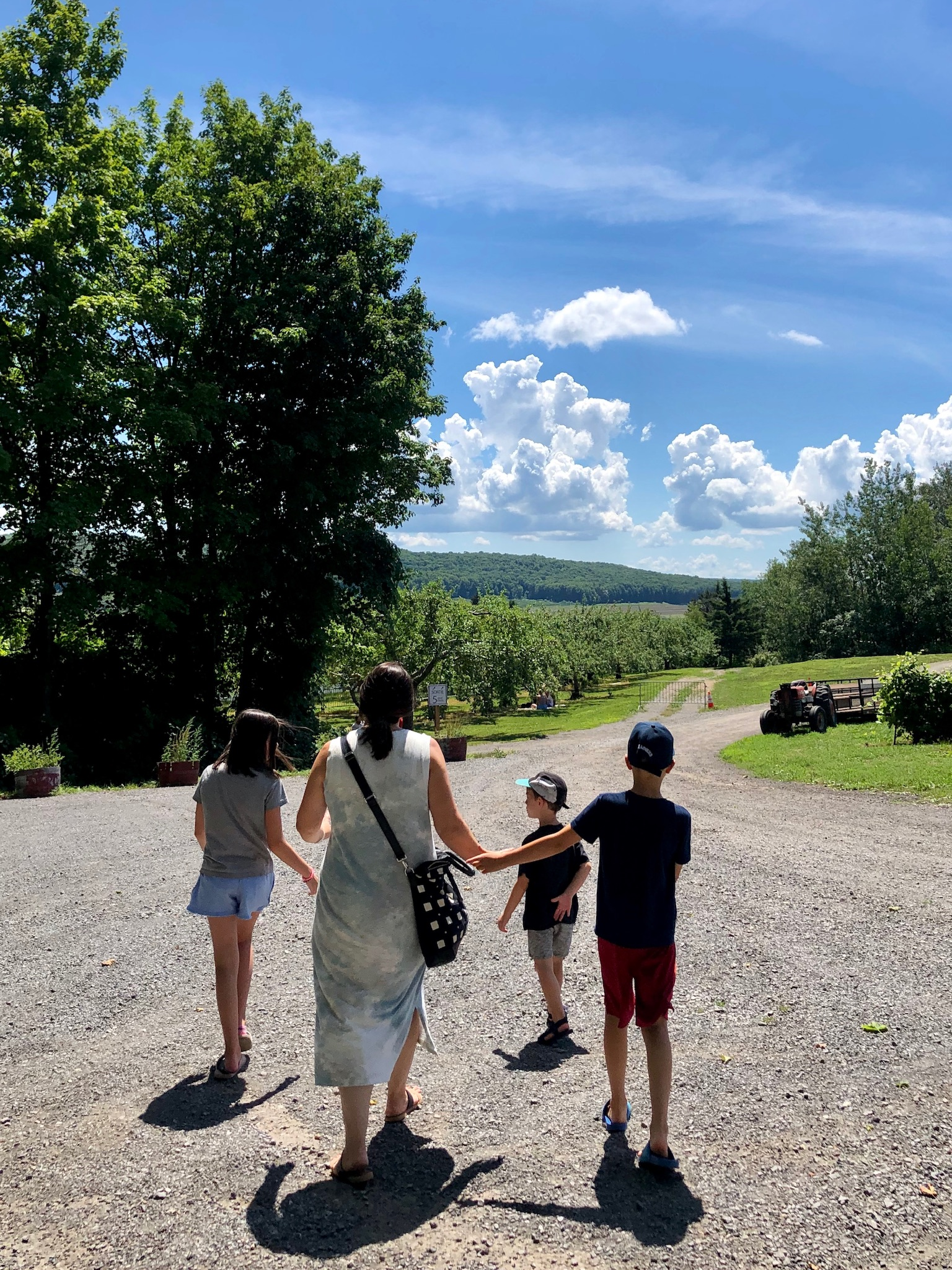 Winery near Montreal: An Unexpected Picnic Destination