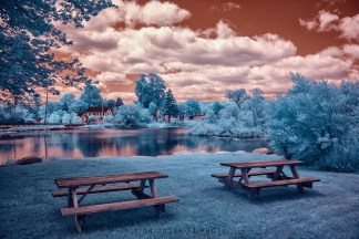 Grays Mill Pond in Infrared. Adamsville, Little Compton, Rhode Island