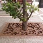 - Henri Matisse - Entourage d'arbre Mobilier urbain