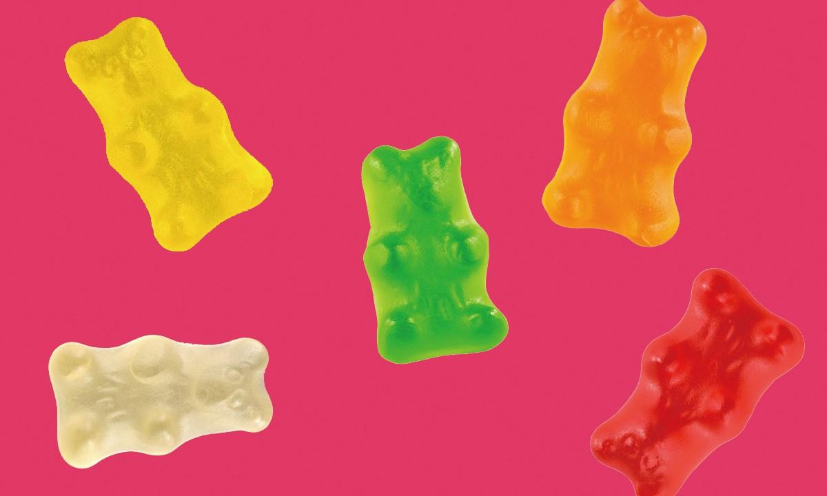 bear-gumi