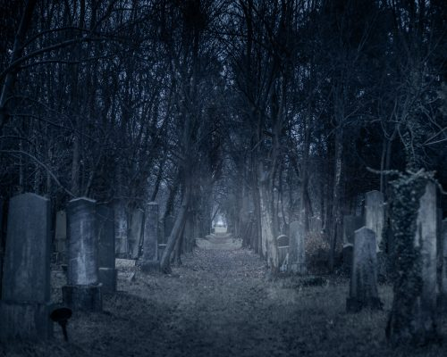 Old cemetery. Creepy background.