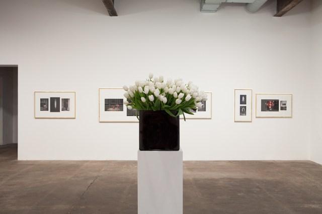 Plaisance, installation view. Background: Sven Augustijnen, Les Demoiselles de Bruxelles, 2008. Foreground: Willem de Rooij, Bouquet VI, 2010.