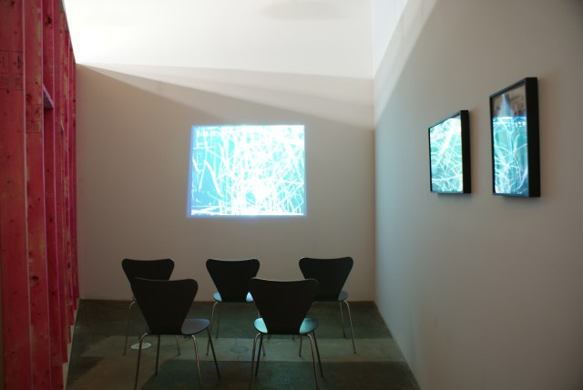Catawampus (for H.D.), installation view. Amy Granat and Matt Keegan, left to right: Seasons, 2005-2007; Right: Seasons (Still Stills) #4, 2008; Seasons (Still Stills), 2008. All works courtesy of the artists.