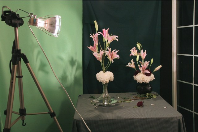 Photograph of Flowers Arranged by an Architect in Shades of Green (#1), 2008. Inkjet print. 21 x 29 inches.