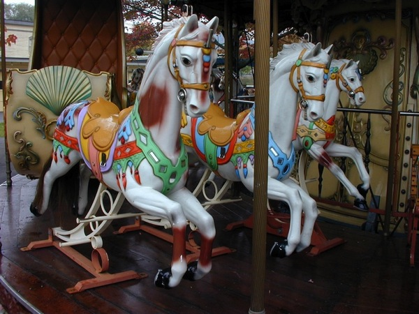 Bertazzon carousel 03