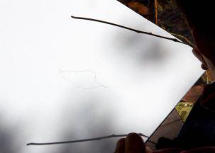 Shadows: Enter the Light - Todd Mrozinski (WI)