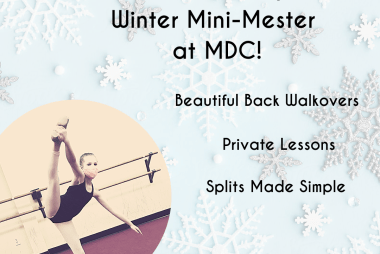 3 Mini-Mester Classes to Choose From!