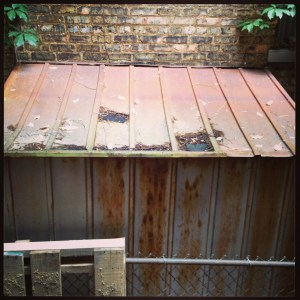 roof of a shed