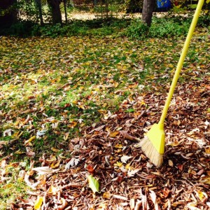 Ask not whose job it is to sweep the leaves. Ask where the rake is, because a broom won't work.