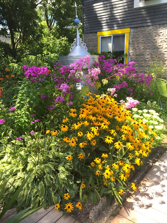 Lovely garden with native species plants.