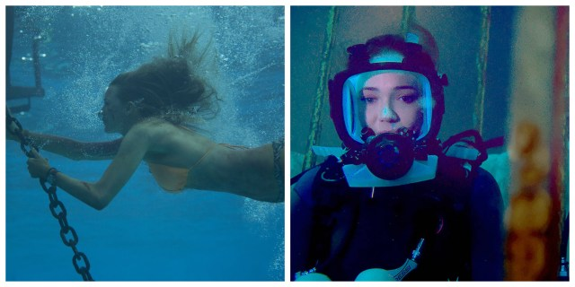 Endless Summer: 47 Meters Down & The Shallows