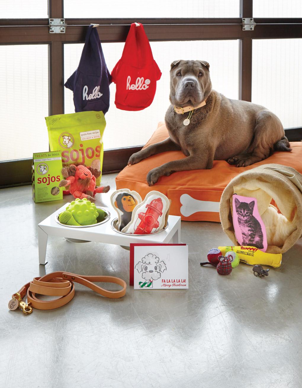 Gift-Guide_Dog_G