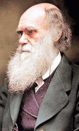 darwin-colour