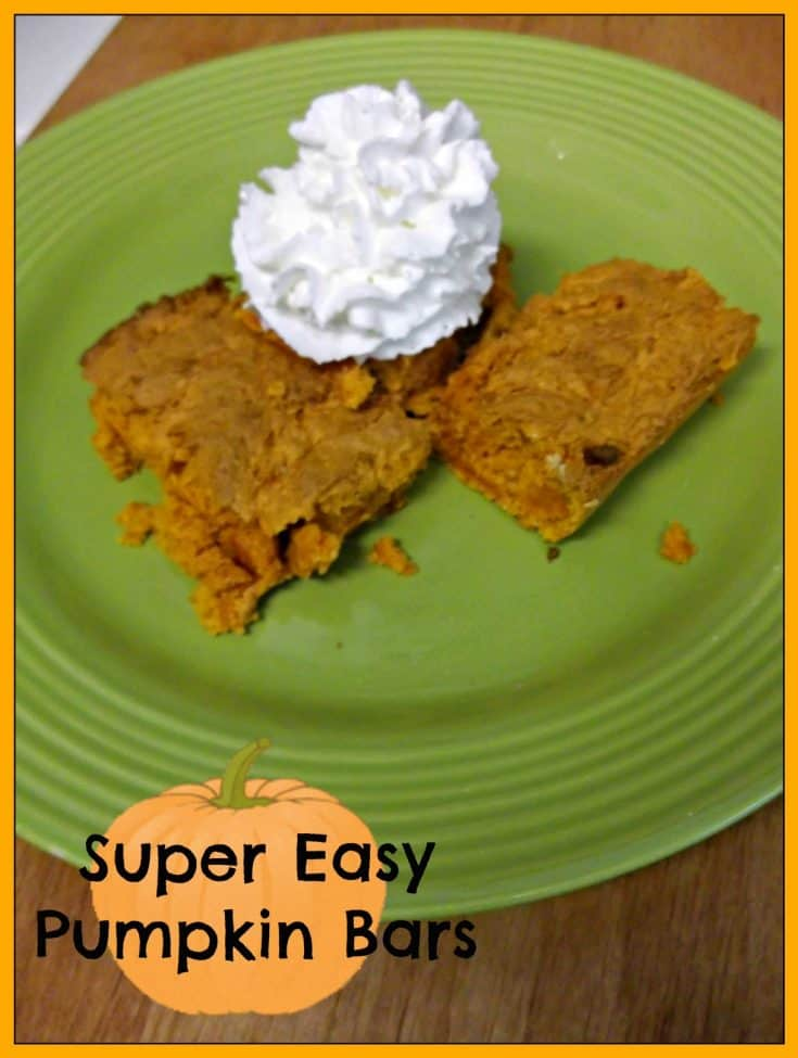 Super Easy Pumpkin Bar Recipe