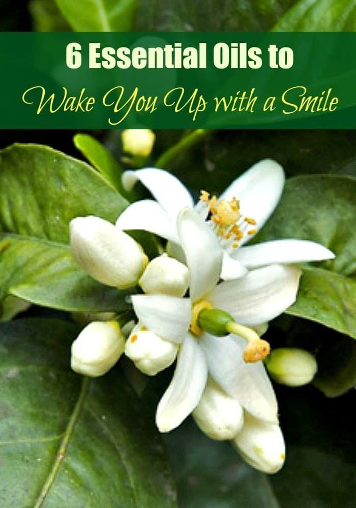 6 Essential Oils to Wake You Up with a Smile