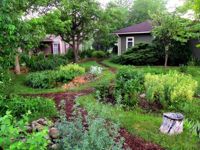Garden Pond Design Nz