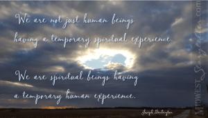 Not Just Human Beings www.midweststoryteller.com