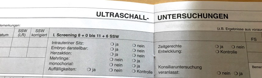 Erstes Screening im Mutterpass explained in english