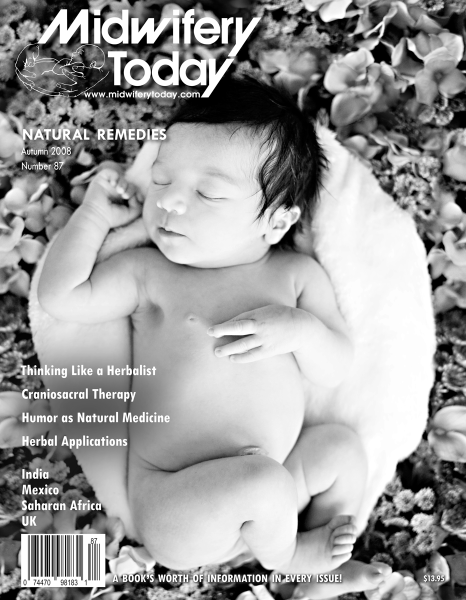 Midwifery Today Issue 87