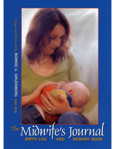 Midwifes Journal Birth Log And Memory Book
