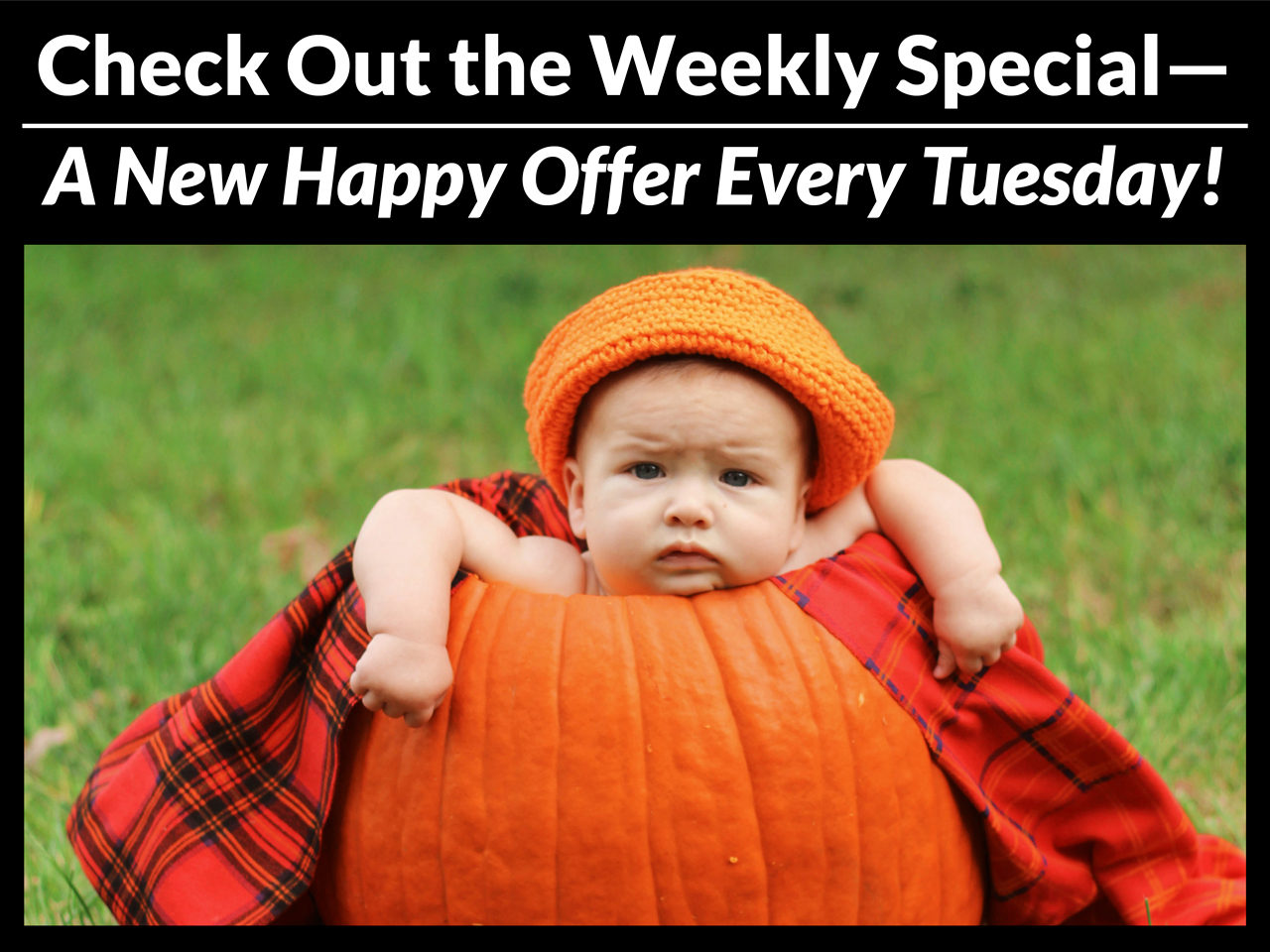 Check out the Weekly Specials