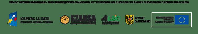 Aktywne Organizacje Silny Samorząd finansowanie POKL
