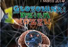 2014-02-27-I-glogowskie-dni-mozgu@Glogow--Przechwytywanie w trybie pełnoekranowym 2014-02-27 092106