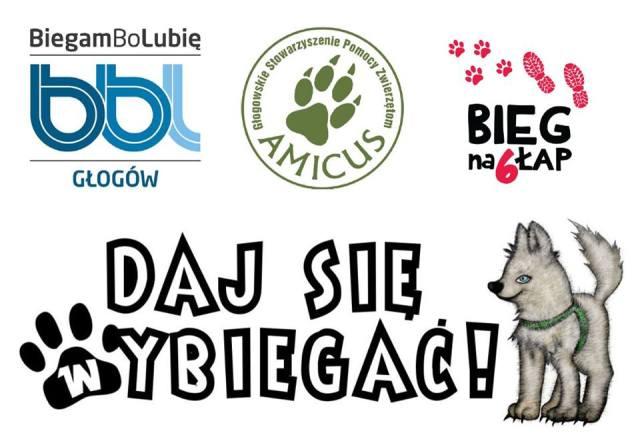 AMICUS: Daj się wybiegać! @ Głogowskie Stowarzyszenie Pomocy Zwierzętom AMICUS | Głogów | Województwo dolnośląskie | Polska