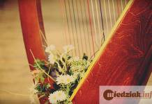 2015-11-06 Morderca harfistki i portiera z jeleniogórskiej filharmonii zostanie za kratami do końca życia harfa