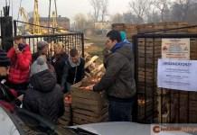 13.02.2016 r. Tarnówek, rozdawanie darmowych jabłek