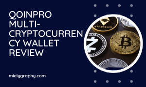 Qoinpro multi-cryptocurrency wallet review