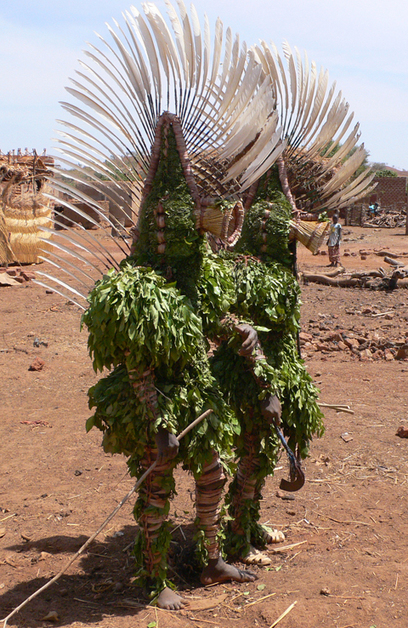 Do Grass Mask  Bwa  Unmasking the Truth A Look at