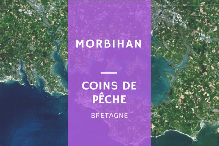 Bretagne sud Pêche Morbihan département spots bar