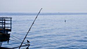 bredouille à la pêche