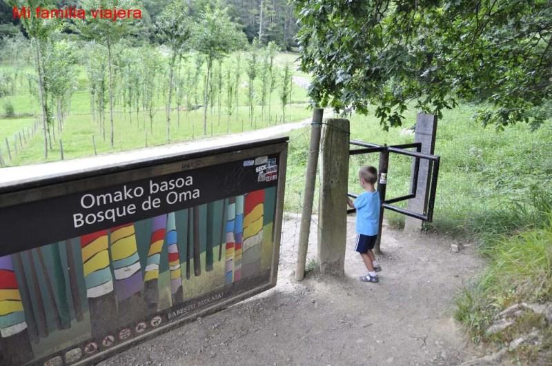 Bosque de Oma, Vizcaya