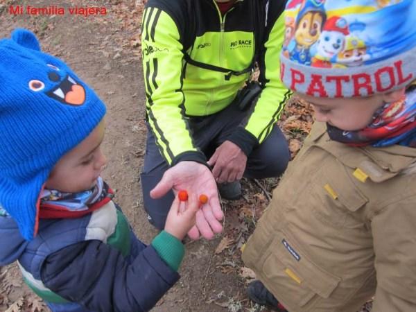 Cómo equipamos a los niños para hacer senderismo