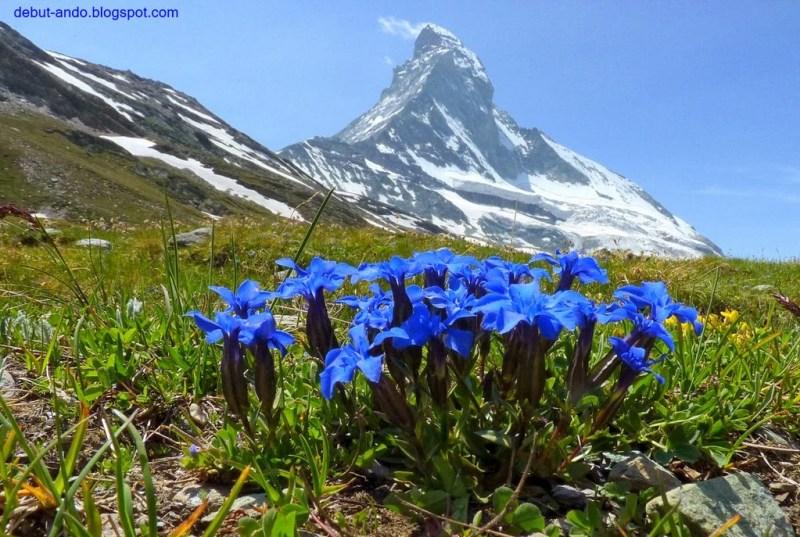 Cervino, Zermatt