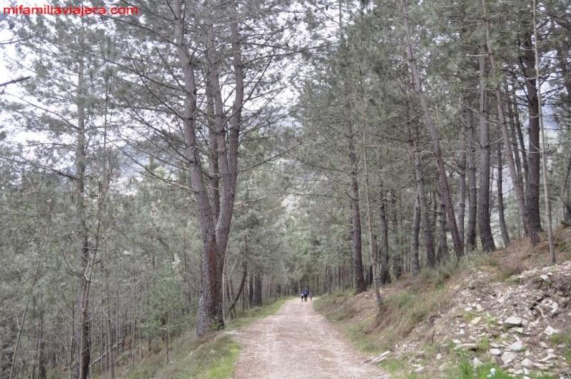 Fervenza o Seimeira de Villagoncede, Lugo