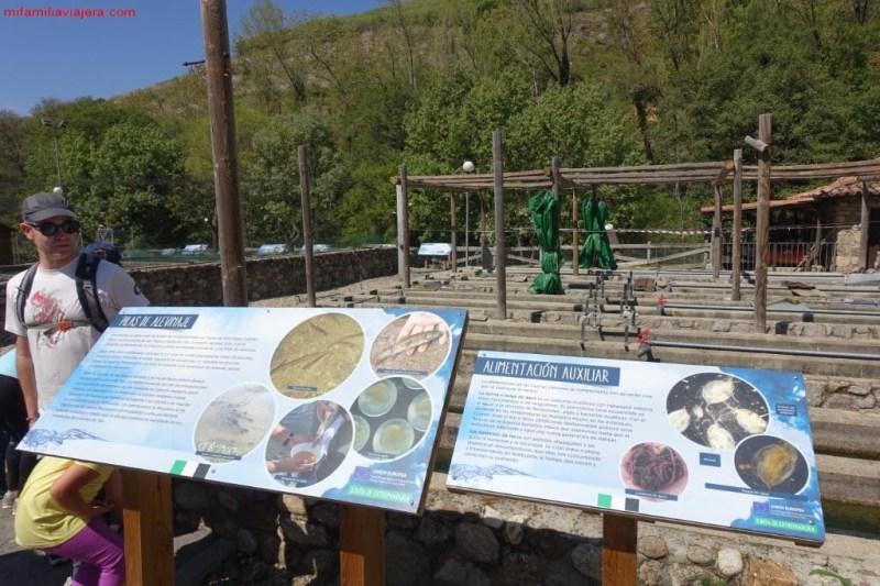 Centro Reproducción de Salmónidos, Jerte, Extremadura