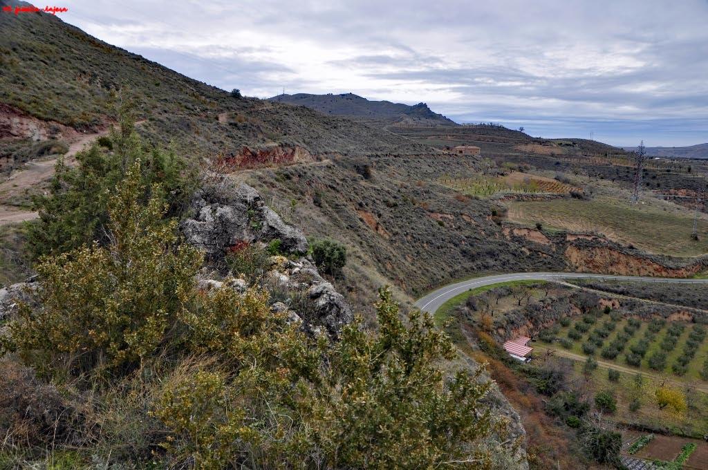 Reserva de la Biosfera de los Valles de Leza, Jubera, Cidacos y Alhama