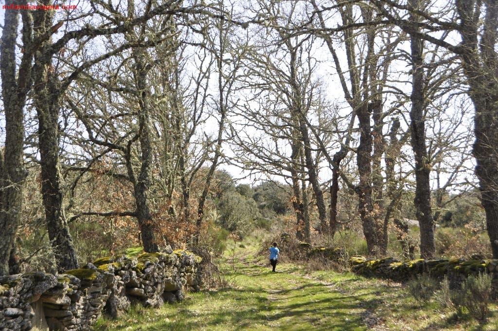 Regreso por los caminos agrícolas entre Brandilanes y Castro de Alcañices