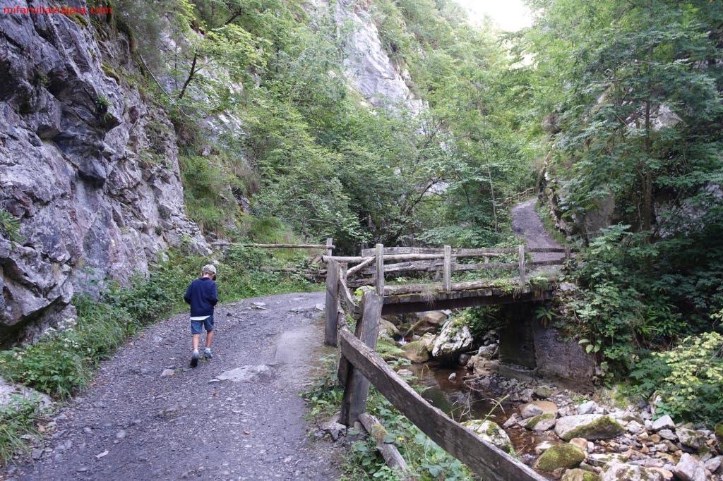 Puente sobre el arroyo