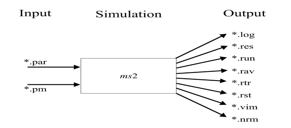 Buy Essay Sample: Simulation Input and Output