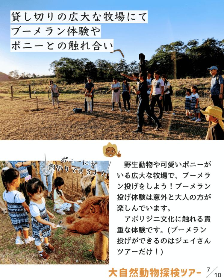 大自然動物探検ツアー【ジェイさんツアーマガジン】
