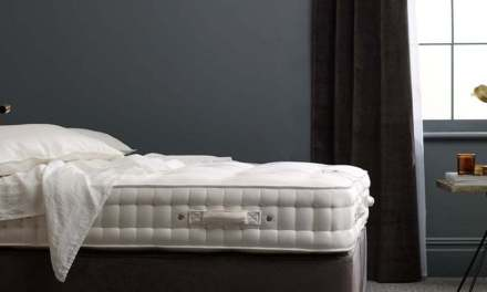 The best mattress with long trial periods including pocket spring and latex