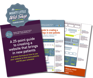 Mighy Little Web Shop 25-point website guide